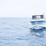QUICKSILVER 905 Pilothouse / OB NO.1